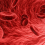 Marla Ahlgrimm: Varicose Veins